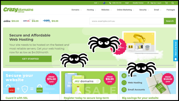 spider crawling on website
